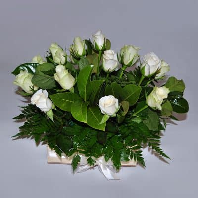 Box Arrangement – White