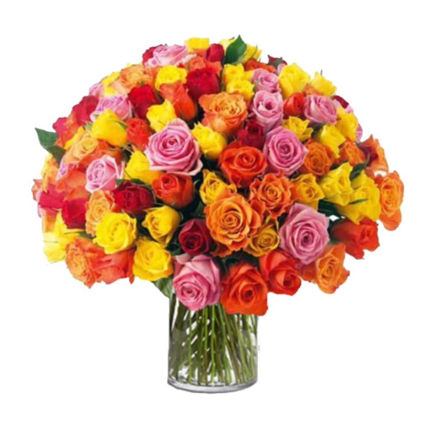 100 Mixed Roses In Vase